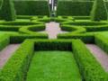 Ландшафтный дизайн — облагораживаем новый дом